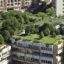 Techos verdes sobre azoteas de edificios en Bogotá